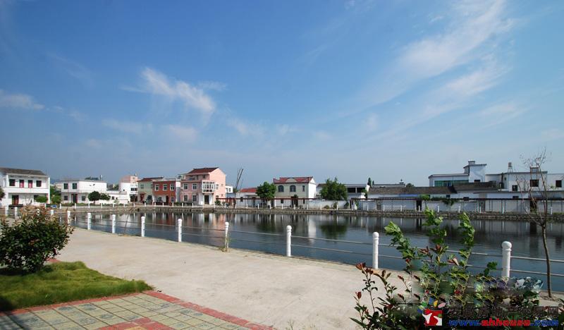 美丽建设 走进杨安村